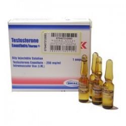 Enantato De Testosterona Norma Hellas